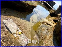 Atocha 1622 Silver Bar 10lbs Ingot Mel Fisher Treasure Salvors Pirate Gold Coins